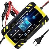 NWOUIIAY Chargeur de Batterie Intelligent Portable 8A 12V/4A 24V LCD Écran...