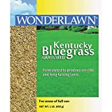 Barenbrug USA 50201 Kentucky Bluegrass Grass Seed