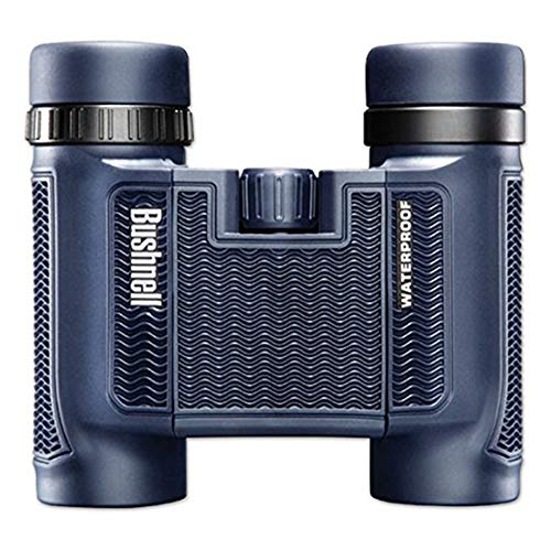 Bushnell 138005 H2O Waterproof/Fogproof Compact Roof Prism Binocular, 8 x 25-mm, Black