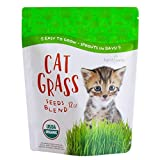 Organic Cat Grass Seed Blend for Planting by Handy Pantry - A Healthy Mix of Organic Wheatgrass Seeds: Barley, Oats, and Rye Seeds - Non-GMO Wheat Grass Seeds for Pets - Cat Grass Kit Refill (12 oz.)