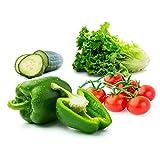 Vegetable Seeds for Planting Vegetables - Variety Salad Pack - Romaine Lettuce - Cherry Tomato - Cucumber - Bell Pepper!
