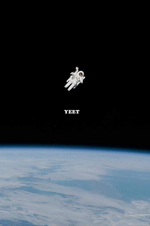 Amazon.com: Yeet Me Into Space Astronaut Funny Dank Meme Cubicle Locker  Mini Art Poster 8x12: Home & Kitchen