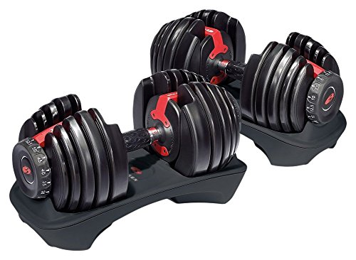 Bowflex SelectTech 552 Adjustable Dumbbells (2-Pair)