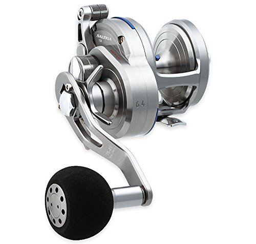 Daiwa SASD15HL Saltiga Star Test Seaborg Megatwin 2SPD Power Assist Fishing Reel, 12-20 lb, Silver