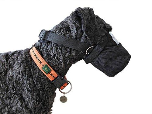 NATURE PET Protezione di Veleno Esca/Netto della museruola/Protezione di Perdita in Caso di Dolente/Rete di Sicurezza per i Cani Realizzata Neoprene Lungo Versione - M