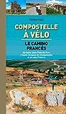 Compostelle à vélo : Le camino francès. De Saint-Jean-Pied-de-Port à...