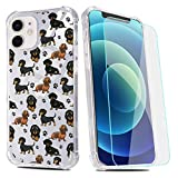 Dachshund Phone Case for iPhone 7 Plus/iPhone 8 Plus with Screen Protector,Clear Dachshund Puppy Pattern Soft & Flexible TPU Ultra-Thin Shockproof Transparent Bumper Protective Case for iPhone