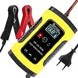 NWOUIIAY Chargeur de Batterie Intelligent Portable 6A / 12V LCD Écran avec...