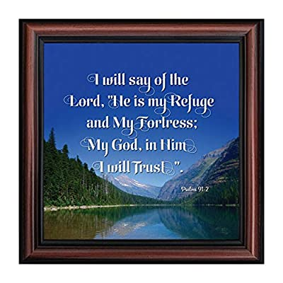 "Picture framed scripture verse on trusting God. Great gift for a house warming present, Religious gift. UNIQUE WALL ART for hanging or tabletop display. Includes glass front and easel back with easy to use wall hanger. The finished frame size is 10""x..."