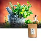 Laurel orgánico, hojas secas