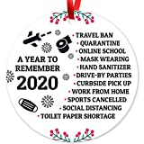 Soul Décor 2020 Christmas Ornaments, Quarantine Christmas Decorations, Toilet Paper Crisis, Large 3.75