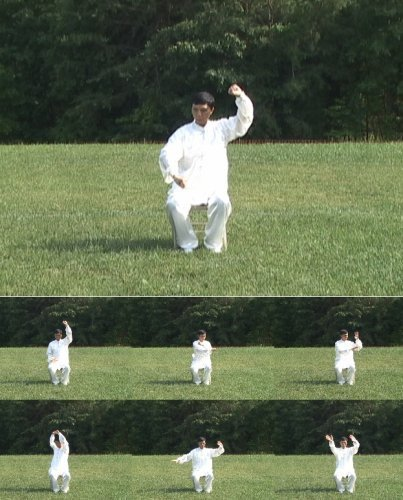 Dr. Chen's Tai Chi GongFa 002 on Chair (Tai Chi Qigong Workout for Wheelchair People Level 2) 1
