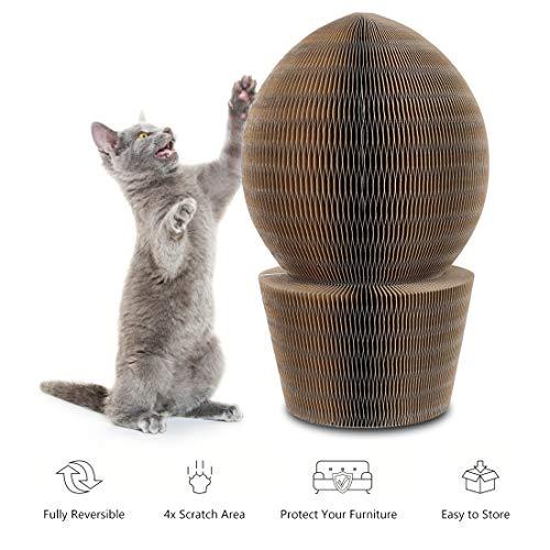YOUTHINK Kratzbretter Katze, Faltbarer Kratzmöbel Hochwertig Katzen Scratcher Lounge mit Katzenspielzeug Bell Ball und Katzenminze Katzen Kratzbrett zum Kratzen beim Spielen und Schlafen