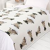 Dreamscene Pug Dog Fleece Blanket Super Soft Warm Cozy Sofa Bed Throw, 50' x 60' inch - Puppy Dog Print