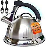 Whistling Tea Kettle with iCool -...