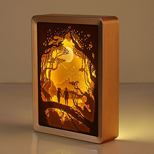 WOMHOPE Valentine's Day Gift 3D Papercut Light Boxes Frame Night Lights Paper Sculptures Night Lamp of Creative Shadow Paintings (Good Night)