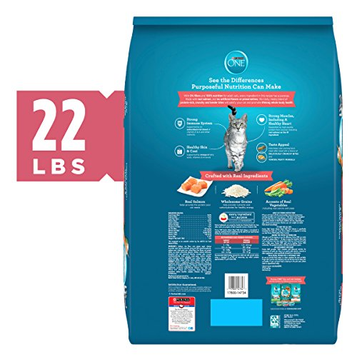 Product Image 7: Purina ONE Natural Dry Cat Food, Tender Selects Blend With Real Salmon - 22 lb. Bag