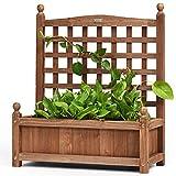 COSTWAY Jardinière avec Treillis Bois, Bac à Plante, Pots à Fleurs avec...