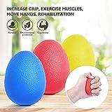 Peradix Balle reeducation de la Main et Doigts Anti-Stress Incassable - Muscleur de Main -Exercice de Renforcement de la Main - Lot de 3 Egg Ball de Résistance différente