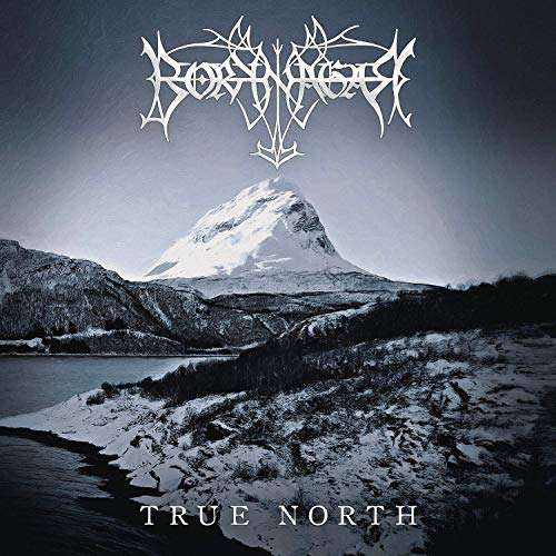 True North (Gatefold black 2LP) [Vinyl LP]