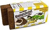 Humusziegel - Substrat Terrarium Tortue terrestre - Reptile...