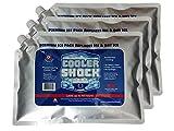 Cooler Shock 3X Lg. Zero°F Cooler...