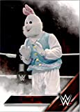 2016 Topps WWE Wrestling #11 The Bunny