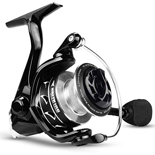 KastKing Valiant Eagle II Spinning Fishing Reel,Carbon Version,Size 2000