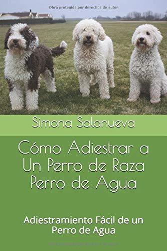 Cómo Adiestrar a Un Perro de Raza Perro de Agua: Adiestrami