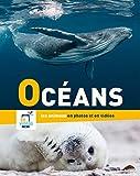 Océans : Les animaux dans leur habitat naturel en photos et en vidéos