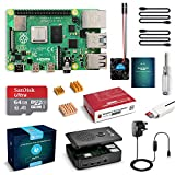 LABISTEN Raspberry Pi 4 Starter Kit Pro (4G RAM) - 64 GB SD card with pre-installed noobs, fan, micro-HDMI cable x 2, black housing, specially developed for Pi 4B