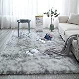 Fuzzy Abstract Area Rugs for Bedroom Living Room Fluffy Shag Fur Rug for Kids Nursery Dorm Room Cozy Furry Rugs Plush Throw Rug Shaggy Decorative Accent Rug for Indoor Home Floor Carpet