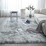 Shag Loomed Area Rug for Kids Play Room Warm Soft Faux Fur Luxury Rug Plush Throw Rugs High Pile Rug...