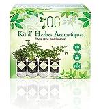 OG Kit Huerto Urbano - Kit Completo de 4 Plantas aromaticas...