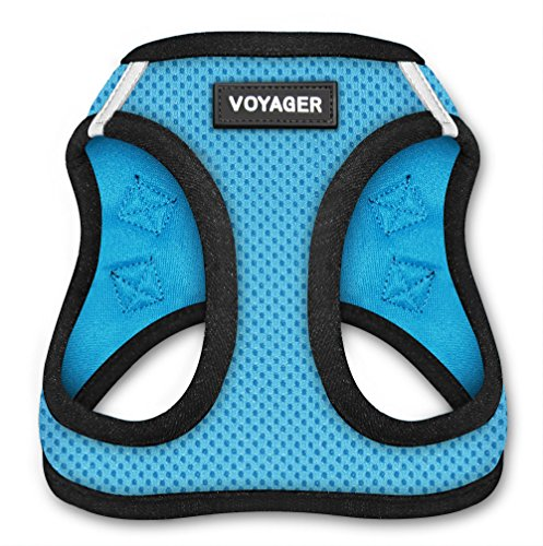 Voyager Step-In Air Dog Harness - All Weather Mesh, Step In Vest Harness for Small and Medium Dogs by Best Pet Supplies - Baby Blue Base, X-Large (Chest: 21' - 23')
