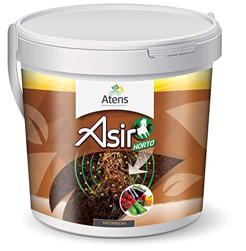Atens Asir Horto - Micorrizas y Trichodermas - 50 Pastillas