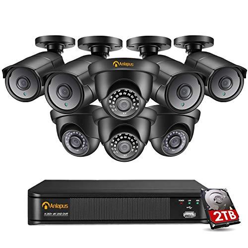 Anlapus 8CH 4K H.265 + Sistema di Videosorveglianza DVR con Disco Rigido da 2 TB e (8) Set di Telecamere di Sorveglianza Dome e Bullet Ultra HD 4K 8MP, Rilevamento del Movimento, Accesso Remoto