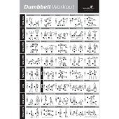 NewMe Fitness Dumbbell Workout Exercise Poster - Now Laminated - Strength Training Chart - Build Muscle, Tone & Tighten - Home Gym Weight Lifting Routine - Body Building Guide w/Free Weights