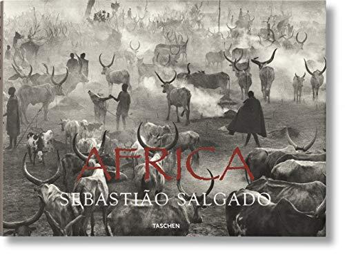 Africa. Ediz. multilingue
