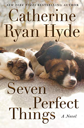 Seven Perfect Things: A Novel Kindle Edition