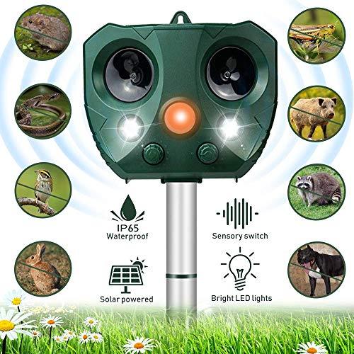 Molbory Katzenschreck Ultraschall Solar, wasserdichte Utraschall Tiervertreiber mit Batteriebetrieben und Blitz 5 Modus Einstellbar Ultraschall Abwehr Tierabwehr für Katzen Hunde Schädlinge Rotwild