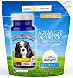 Agatha's Advanced Probiotics for Dogs – 2 Month Supply  15 Billion CFUs, 10 Strains  Improves Digestion, Reduces Diarrhea & IBS, Supports Immune System, Reduces Allergies, Yeast, & Dental Issues