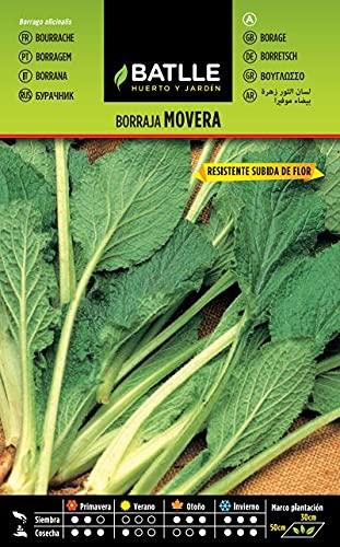 Semillas Hortícolas - Borraja Flor Blanca Movera - Batlle