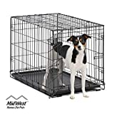 Dog Crate   MidWest ICrate 30 Inch Folding Metal Dog Crate w/ Divider Panel,  Medium Dog, Black