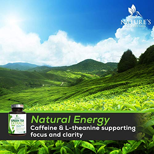 Green Tea Extract 98% Standardized EGCG Weight Loss 1000mg - Boost Metabolism for Healthy Heart - Antioxidants & Polyphenols - Gentle Caffeine, Fat Burner Pills, Made in USA - 120 Capsules 8
