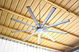 Big Air Industrial Indoor/Outdoor Ceiling Fan, 6 Speed with Remote