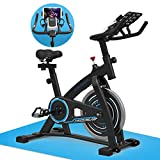 GOFLYSHINE Exercise Bikes Stationary,Exercise Bike for Home Indoor Cycling Bike for Home Cardio Gym,Workout Bike with 35 LBS Flywheel