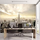 murimage Papier New York 3D 366 x 254cm Colle Inclus Photo Mural Manhattan...