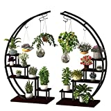 5 Tier Metal Plant Stand Creative Half Moon Shape Ladder Flower Pot Stand Rack for Home Patio Lawn Garden Balcony Holder Black (2 Pack)