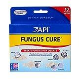 API FUNGUS CURE Freshwater Fish Powder Medication 10-Count Box